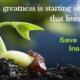 Save & Invest